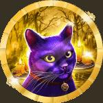 Kyounaut avatar