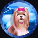 Madziulka avatar