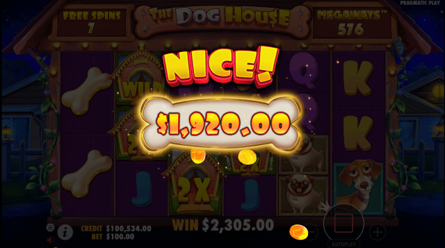 The Dog House Megaways video slot Nice win