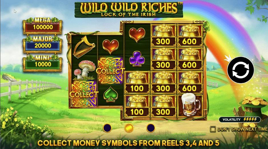 Wild Wild Riches video slot game