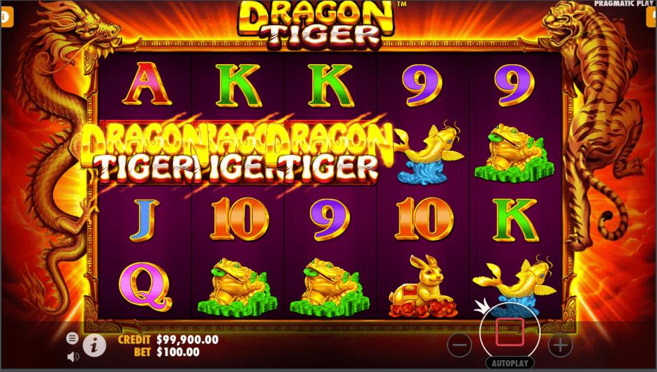 Dragon Tiger Video slot free spins won