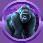 Mochamad99 avatar