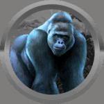 Antek1005 avatar