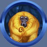 dzsondeer avatar