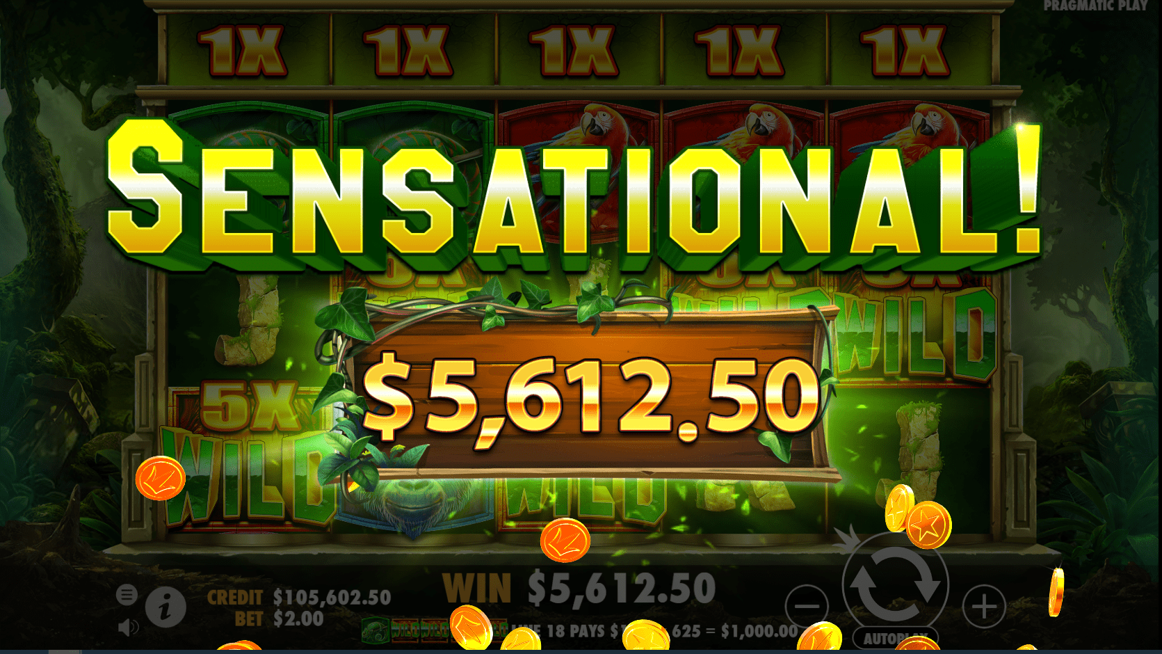 Jungle Gorilla Video Slot Sensational win