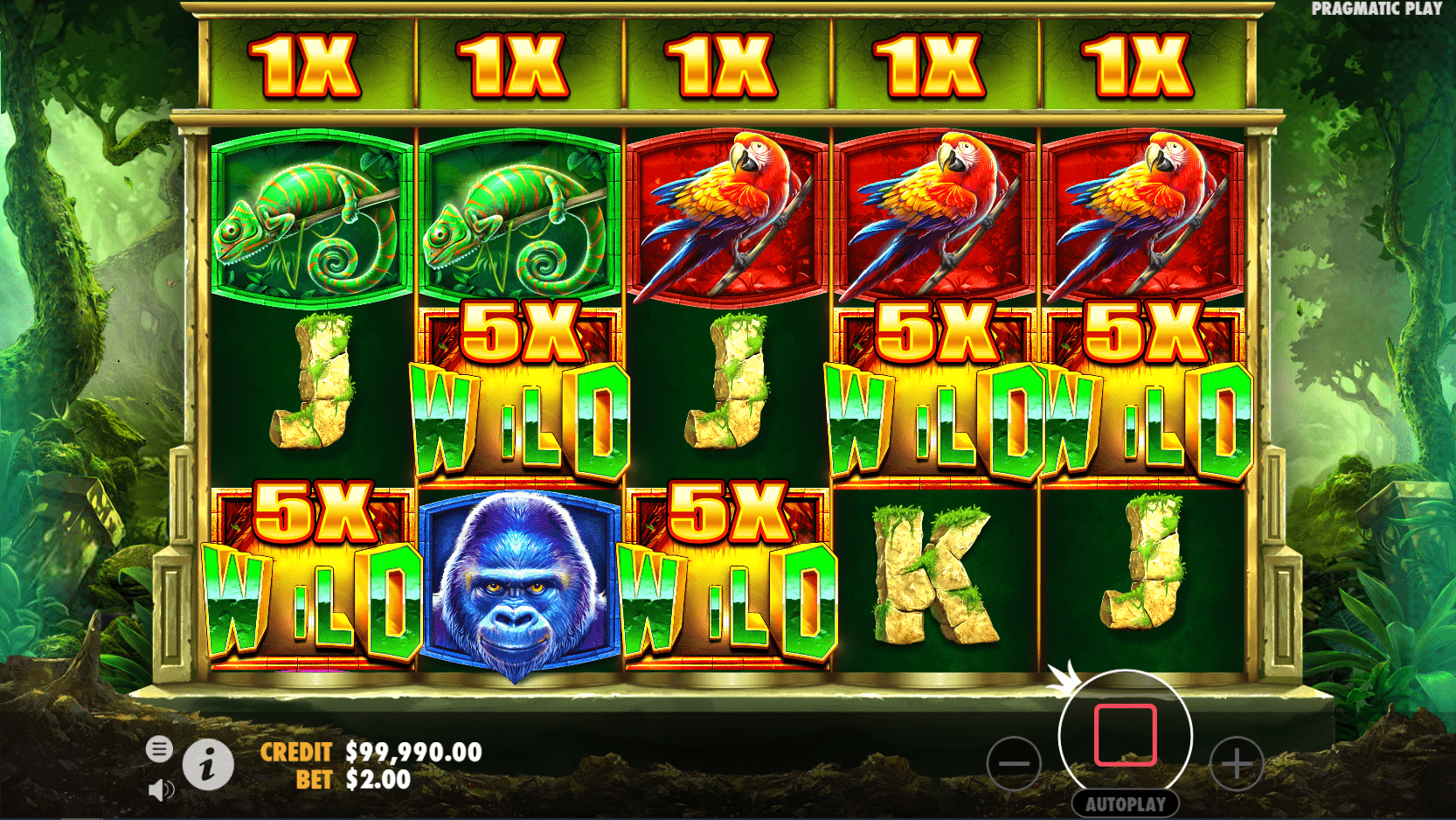 Jungle Gorilla Video Slot Max win