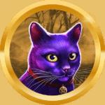 CacaLeite avatar