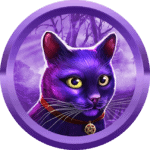 tarikafsar avatar