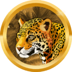 rybaklb avatar