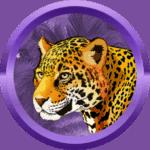 Daro28 avatar