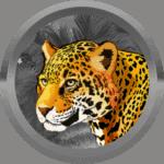 Julianna24 avatar