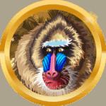 ThunderDov avatar
