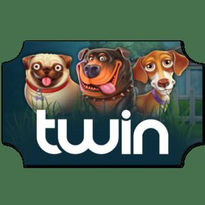 Twin Casino Ticket