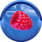 erdbaer avatar