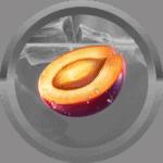 assan avatar