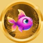 rory48 avatar