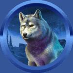maeggi89 avatar