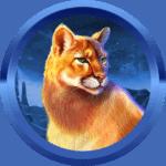 Darren1320 avatar