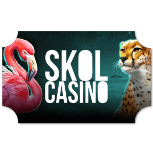 Skol Casino Ticket